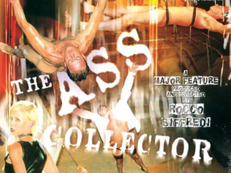 ASS COLLECTOR - (Film porno)